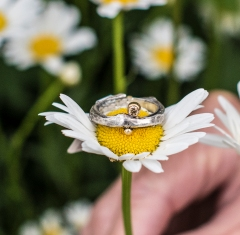 ring_diamond_gold_silver_remaginedesigns_002
